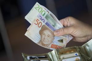 Det blir mer pengar i plånboken i år jämfört med i fjol för nästan alla. För helåret ger det allt från någon tusenlapp för vissa pensionärer till över 20000 kronor mer för många arbetslösa.
