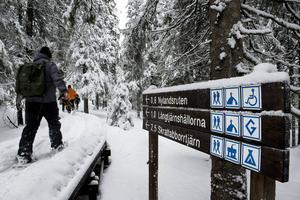 På senare år har allt fler börjat besöka Skuleskogen vintertid, med hjälp av snöskor.