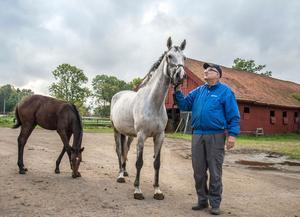 Nils-Gunnar Hansson, mera känd som Nisse på Askö, stänger stuteriet den 1 november. Hans liv har bestått av hästar, och blicken för hästar har han haft med sedan barnsben.