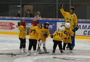Förre landslagsspelaren Danijela Rundqvist fanns med på planen när ÖIK drog i gång sin satsning för att få tjejer att börja lira hockey.