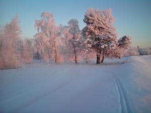 Kvarndammen: Kvällssol, -27°, januari 2009 vid Ströms Vattudals utlopp vid Ulriksfors Foto: Bo-Göran Hedberg