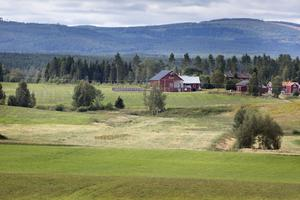 I en naturlig svacka i landskapet i byn Myra vill Gustav Löfstrand på sin mark anlägga en våtmark.