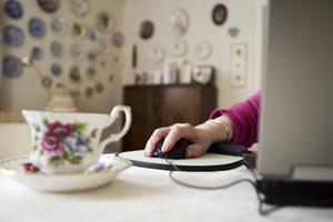 Många äldre är flitiga internetanvändare. Bilden är tagen i ett annat sammanhang.