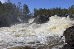 Vitt skummande kastas Voxnans vatten utför Hylströmmen.