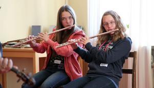 Det är inte enbart fioler bland instrumenten. även flöjter, dragspel, gitarr och slagverk finns representerade.