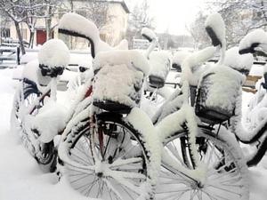 Avsaknaden av en cykelparkering med tak har gjort att hemtjänstens cyklar varit minst sagt svåra att använda den senaste tiden. BILD: PRIVAT