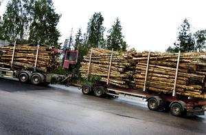 Ungefär 70-80 åkerier med cirka 140 fordon med Skogsåkarnas skylt på taket kör nu virke åt Stora Enso Skog.