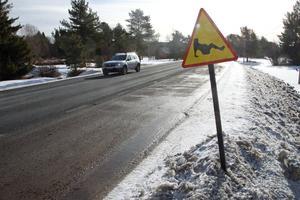 Vägskylten efter länsväg 331 mellan Sollefteå och Sundsvall  med en  gravid kvinna väcker stor uppmärksamhet bland bilisterna som färdas efter vägen.