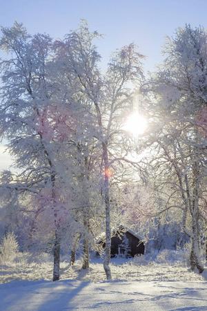 Så här ska vintern se ut. Från Bruksvallarna i november.