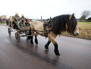 Nu är hästkaravanen på väg från Häradsbygden till Stockholm. Åtta förväntansfulla ekipage...
