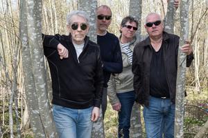 Bandet KingsGarden från Sandviken gör sin första spelning på Drömfesten – men det är ett gäng rutinerade Sandvikenmusiker det handlar om.