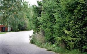Gående som kommer bortifrån och får möte med bil i kurvan på bilden riskerar få problem.
