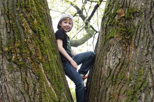 Adam Norell från Gärdeåsskolan testade vad klätterträdet höll för.