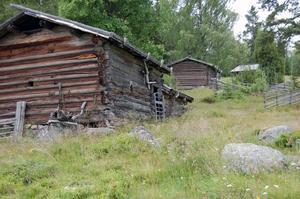 Kulturarv. Gamla timrade hus i en unik fäbodmiljö.