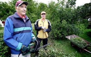 Sven Ohlsson och Lars Olsson klipper häcken åt Lars syster, Maj Sivertsen, i Paradiset. -- I det här området finns det helt klart fler häckar som borde tuktas, säger de. FOTO: LINA AXELSSON BERG