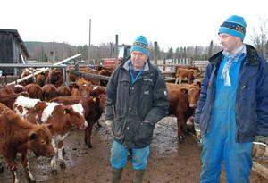 Lars-Olov Larsson och sonen Mattias drabbades ganska hårt av stormen Dagmar.