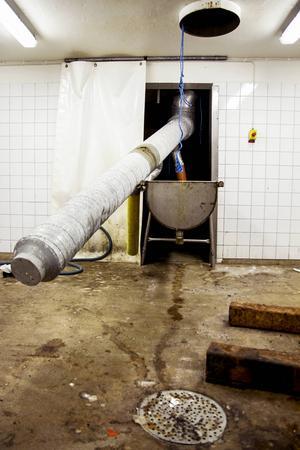 Det finns fortfarande en del utrustning kvar i lokalerna från när det bedrevs surströmmingsfabrik.
