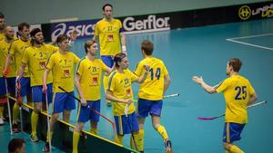 Sverigejubel under VM-kvalet.