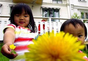 Blomsterflickor på Sundsvallsbesök. Emma-Linn Erlandsson och Lovisa Roman uppvaktar fotografen med gyllene växter.