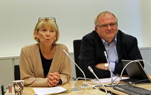 Även om ingen lyckats med det tidigare är Barbro Holmberg och Kent Johansson vid gott mod och övertygade om att de ska få till en ny indelning av landet.