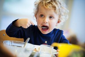 Politiker i Ludvika vill att kommunens förskole- och skolbarn ska få möjlighet att dricka och äta mer ekologiska mejerivaror.