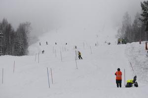 Dimmigt och blött var förutsättningarna till söndagens Alpsvängen.