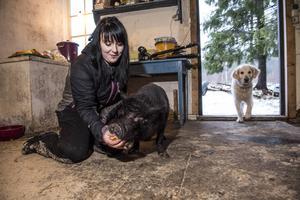 Maartina Gustafsson med grisen Atlas och hunden Aslan.