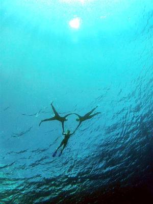 På många ställen som de besökt är vattnet så klart att siktdjupet ofta är så mycket som 40-50 meter. Bilden är tagen utanför Mooreas rev från cirka 15 meters djup, där besättningen bildar en formation vid vattenytan.