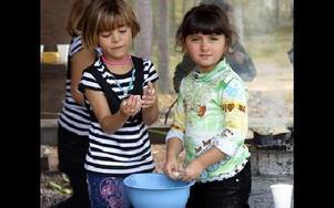 Barnen fick smaka pinnbröd när invandrare i Mora guidades i naturen vid Hemus. Här ser ni Sukaina Dhiaa Wasmi och Marah Bassam.FOTO: ERIC SALOMONSSON