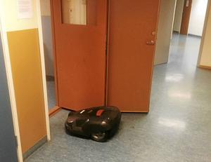 Robotgräsklipparen Lassie på väg in i Rättvikspolisens arrestlokal i väntan på att bli hämtad.