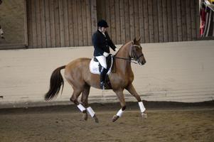 Marianne Westberg från Vansbro vann lördagens finalomgång i klassen A:1, här med hästen Salsa Chateau.