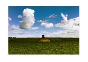 Anders Lif har också lyckats ta riktigt vackra bilder med sin mobilkamera, som vackra