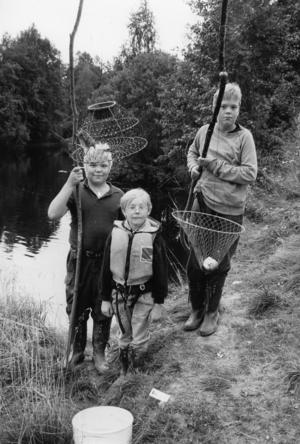 Ort: Harmånger   Rubrik: Vi ska fiska hela natten.   Bildtext: - Visst är det spännande att fiska kräftor även om den första vittjningen inte gav något för Håkan Pettersson, Emil Persson och Henrik när de fiskade kräftor i Harmånger.