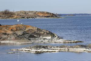 Utsikt från Måssten. Ön är vacker och relativt lätt att ta sig fram på.