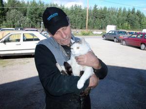 Mirre blev påkörd kort tid efter att Göran tog hand om honom. Men han överlevde och tog lärdom. Därför har han klara sig i tolv år som verkstadskatt.