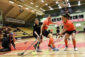 Sundsvalls IBF är redo för kval. Hammarby är det första hindret mot spel i Superligan nästa säsong.