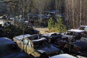 Ett hundratal bilar står uppställda på fastigheten Njurunda Västbyn. Miljökontoret gör bedömningen att upplaget ska betraktas som mellanlagring av avfall.