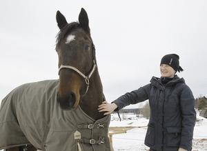 Linda Hedström tränar 11-årige montéspecialisten Just Indeed.