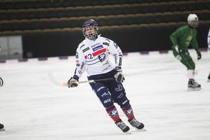 Stefan Karlsson står högt på listan när Joakim Svensk ska välja bästa tränaren i elitserien.