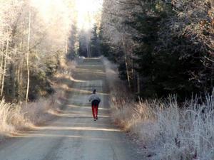 Hemvärnet sökte bland annat igenom området till vänster om joggaren.