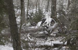 Spillrorna efter skolflygplanet som kraschade i skogen ett par hundra meter norr om Ängsö kyrka.