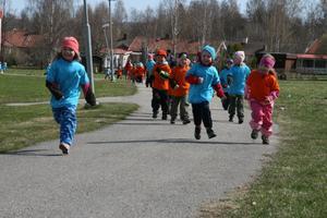 På torsdagen var det åter dags för Vårruset, då 112 förskolebarn i Alfta sprang eller gick en snitslad bana. Detta är en av samlingarna under året då förskolorna samlas och träffas. Man har ett arrangemang var.