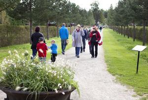 Omkring 1700 personer besökte skördefesten på Wij trädgårdar. den som bar skördehatt sparade 50 kronor i entrékostnad.