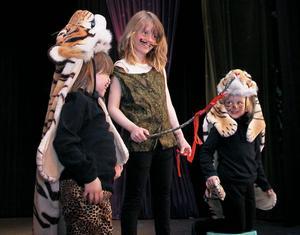 Tigrarna Mirr och Murr låter sig dompteras av tigertämjaren Melinda Persson.