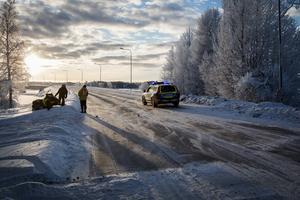 Polisen fick stänga av E45:an i tio minuter för att låta renarna passera över.