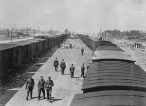 """Slutet av maj 1944. Klockan är ungefär 12 på dagen. I fonden skymtar två krematorier med gaskammare. Vagnarna till vänster har redan tömts på sin mänskliga last. SS-läkare har genomfört en """"selektion"""". Kvar på rampen syns en del av tillhörigheterna de nyanlända tvingats lämna ifrån sig. Vagnarna till höger har ännu inte öppnats. I dem väntar människor som varit på väg i dagar på att släppas ut. I bildens förgrund ser vi SS-personal, som deltagit i arbetet med förmiddagens transport, gå av sin tjänstgöring."""