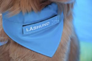 Läshunden Alwin var den första utbildade hunden i länet. Han är en tollare, vilket är den minsta rasen av retrieverhundar.