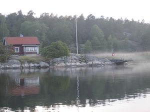 Markdimma efter en häftig regnskur när solen började värma upp marken. Bilden togs på en Björnö i Stockholms skärgård i augusti i år.