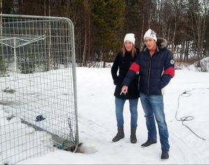 Pernilla Fjätström och Jocke Edlund fick oväntat besök i Lillhärdal. Två vargar försökte ta sig in i hundgården.