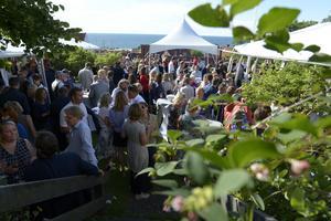 Under sommaren 2016 arrangerades Almedalarna under Almedalsveckan i Visby - i syfte att stärka bilden av Dalarnas län.Foto: Janerik Henriksson / TT